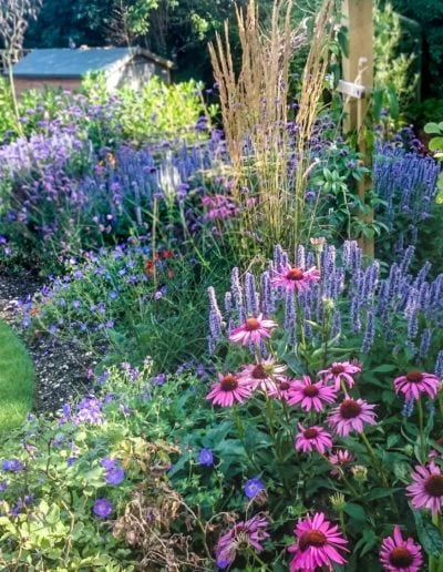 grass-and-perennial-border