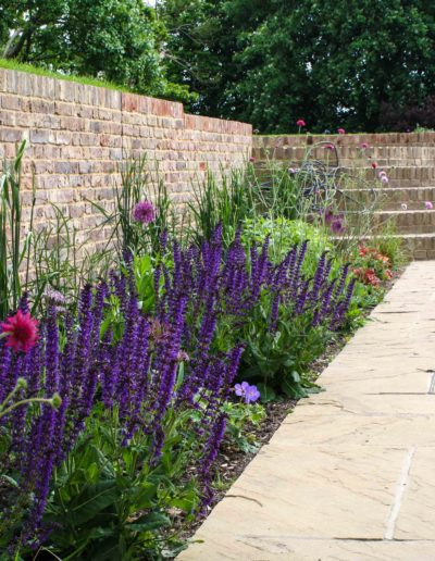 courtyard-planting-and-curved-steps