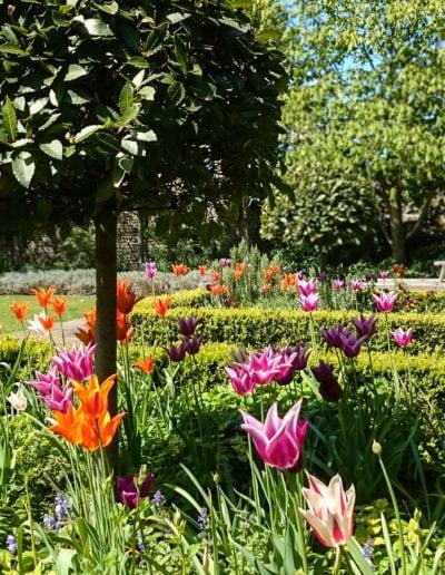beautiful-spring-display_