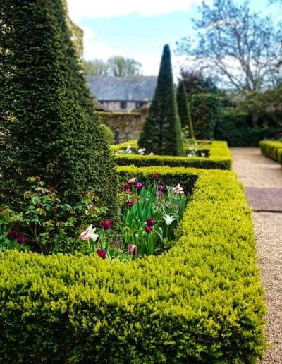 keeps-the-gardener-busy_