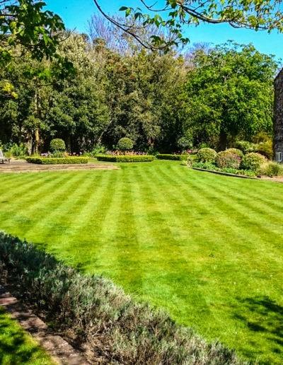 well-tended-garden_