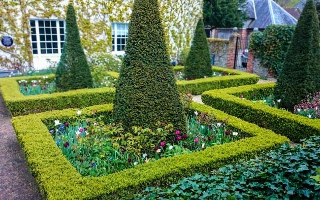 The Steps Towards a Beautiful Garden