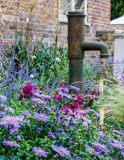 planting-around-old-water-pump